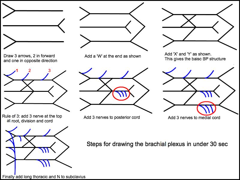 Figure 13(b).png