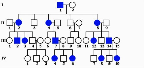 BS8GENETICS7.png
