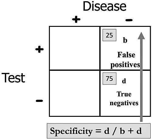 BS11STATISTICS29.png